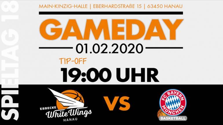 Kampf um die Playoffs: White Wings wollen Heimsieg gegen München